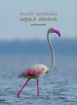 வலசைப் பறவைகளின் வாழ்விடச் சிக்கல்கள்-சண்முகானந்தம்
