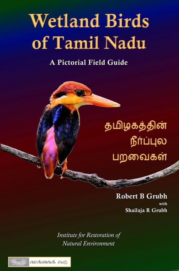 Wetland birds of tamilnadu by robert grubh