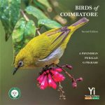 Birds of Coimbatore by Pavendhan
